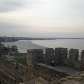 Dniester Estuary Dec 10 just starting to freeze